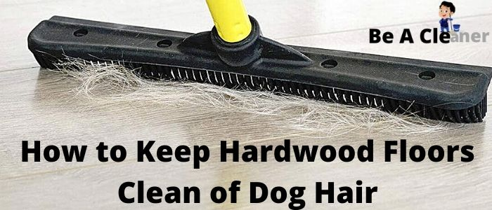 How to Keep Hardwood Floors Clean of Dog Hair