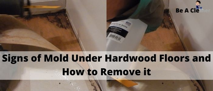 Signs of Mold Under Hardwood Floors and How to Remove it